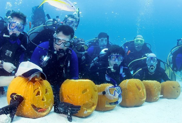 Contestants Create Pumpkin Horrors Underwater