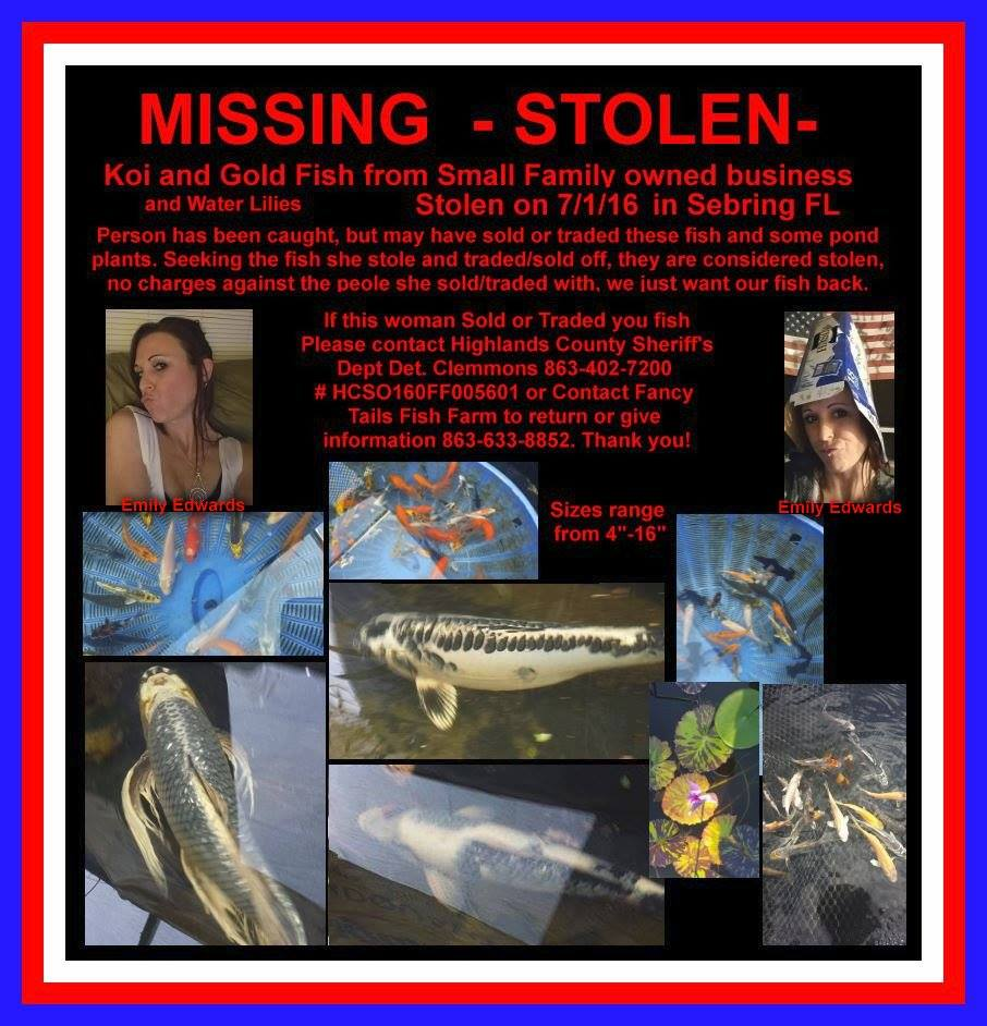 Fancy Tails Fish Farm Theft Flyer 2016-08-08