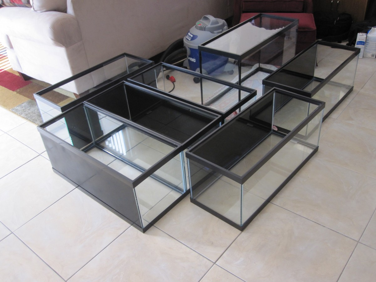 Build Your Own Rack For Multiple Aquariums Cflas